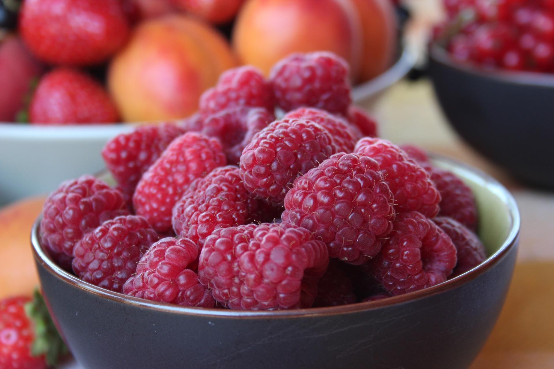 Self service de framboises ouvert ce samedi 14 juillet philfruits - Comment cueillir des fraises ...